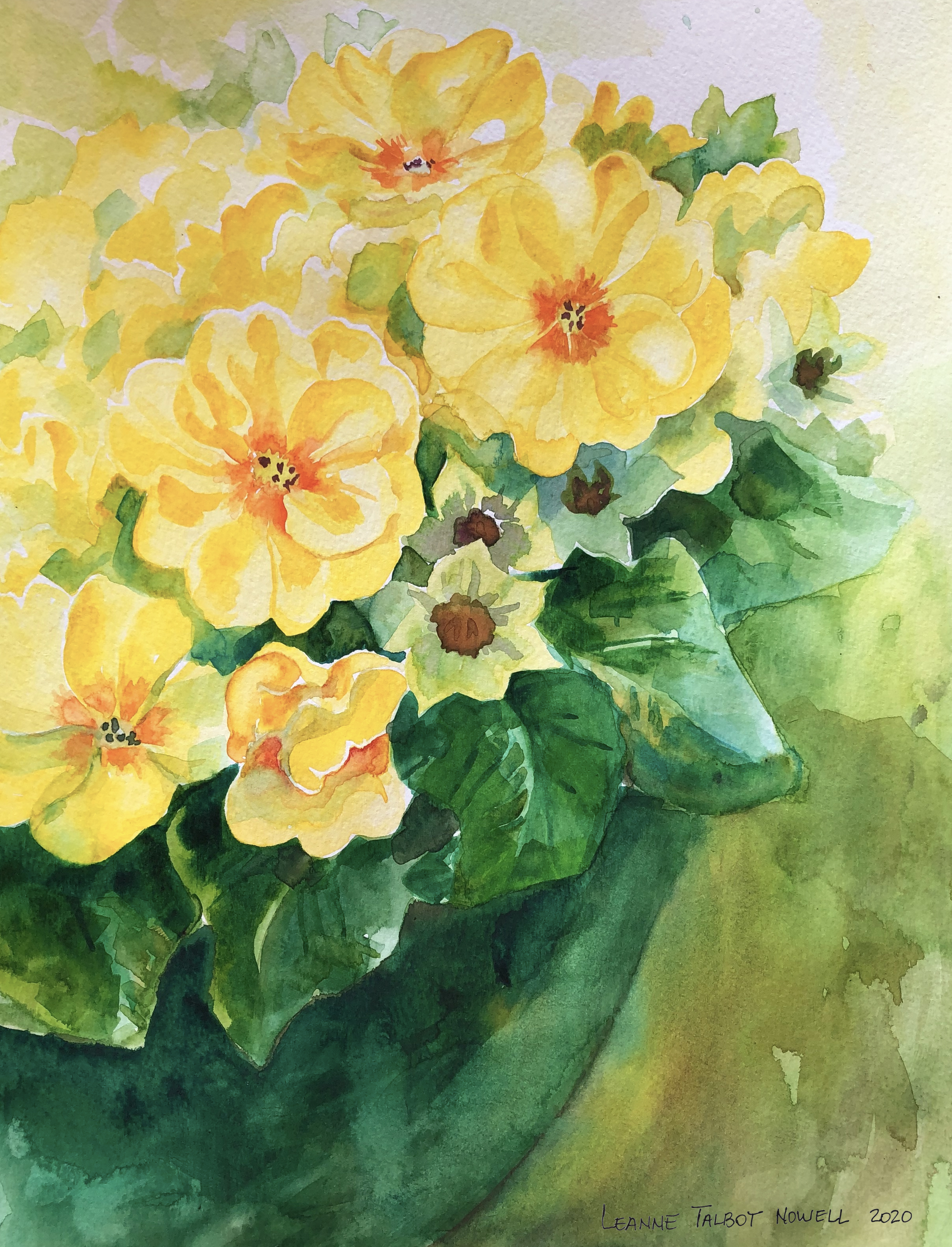 Yellow primroses watercolour by Leanne Talbot Nowell