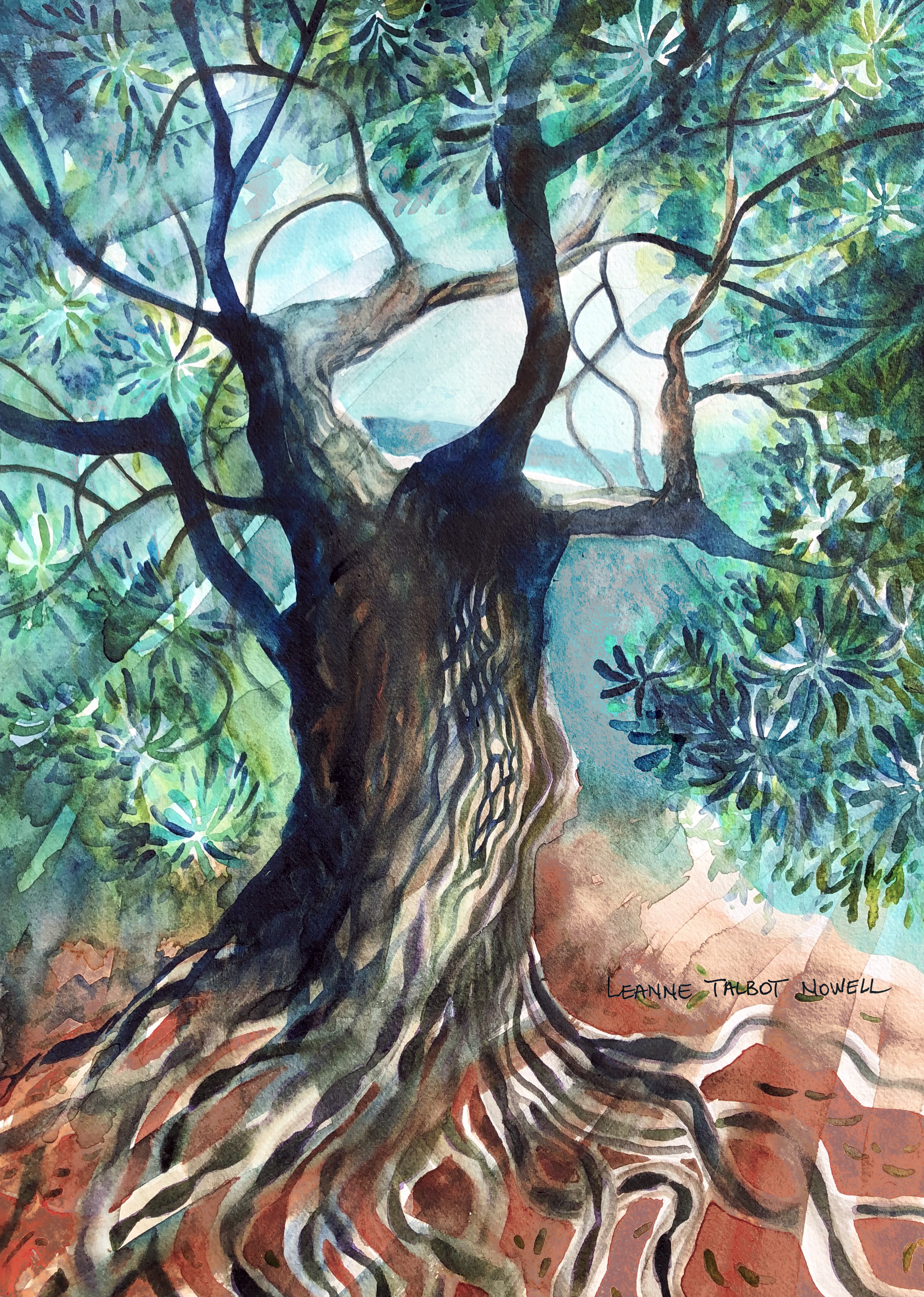 Olive tree - watercolour by Leanne Talbot Nowell